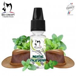 Arôme menthe tabac DIY